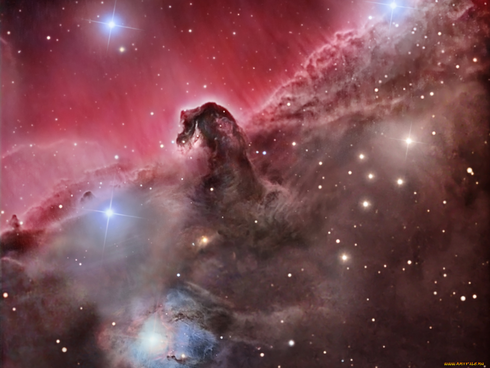hubble pictures horsehead - HD1280×1280