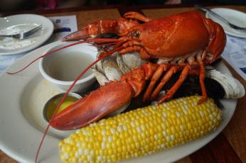 обоя еда, рыба,  морепродукты,  суши,  роллы, омар