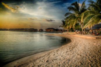 обоя природа, тропики, море, красота, вода, пляж, пальмы