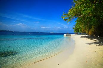 обоя природа, тропики, море, пляж, пальмы, вода, красота