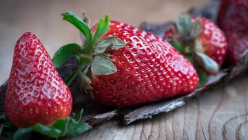 обоя еда, клубника,  земляника, фотосессия, кора, крупный, план, крупно, деревянный, ягоды, композиция, фон, семечки, сочно, макро, блестит