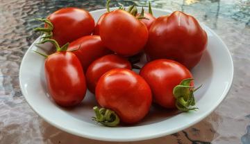обоя еда, помидоры, томаты