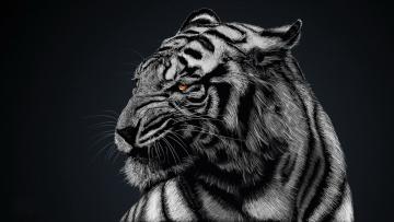 Картинка рисованные животные тигры фон тигр