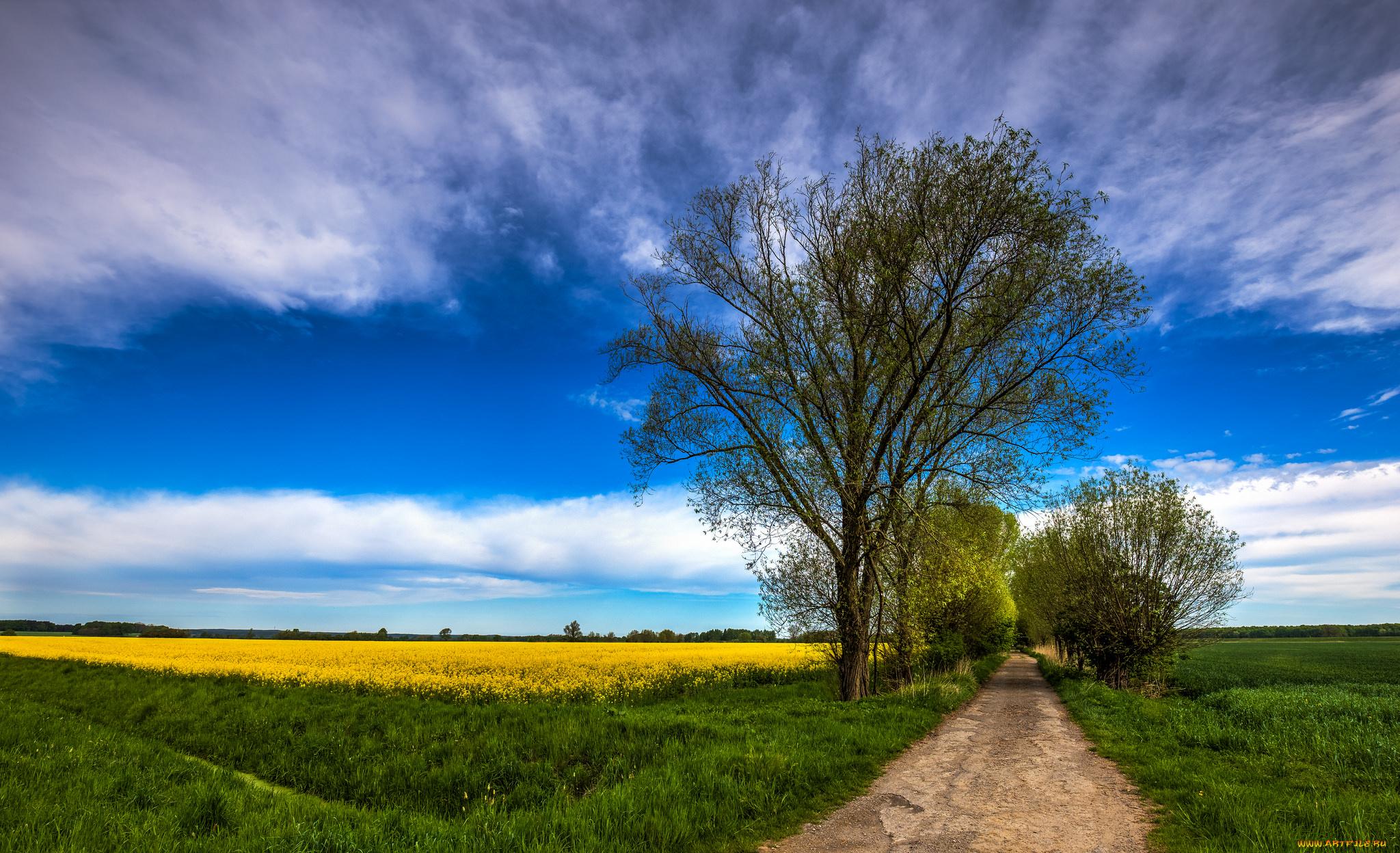 Дорога в поле без смс