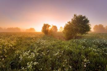 Картинка природа восходы закаты простор