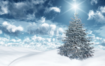 Картинка праздничные Ёлки снег зима
