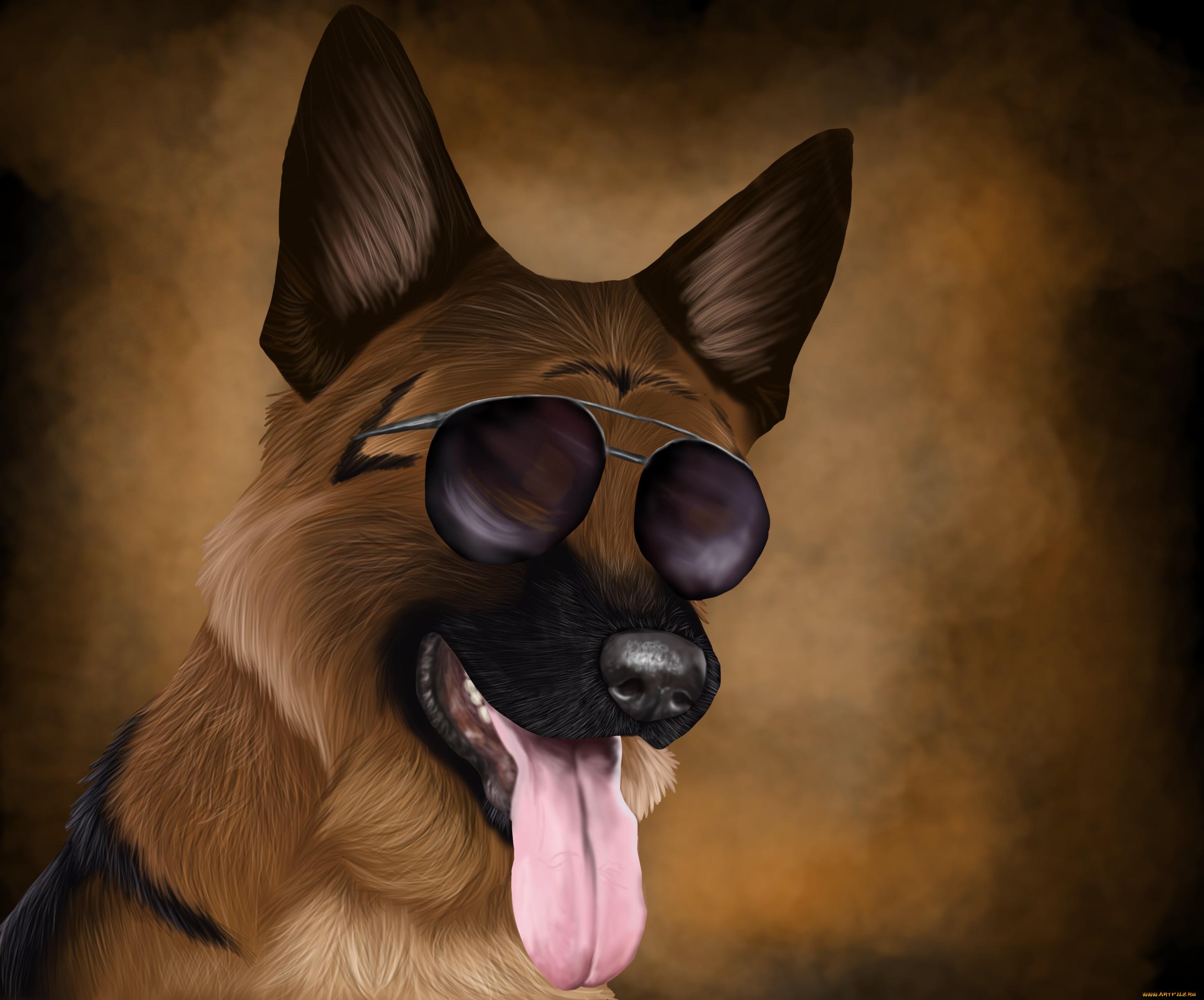 Крутые рисунки собаки