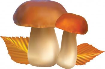 обоя векторная графика, еда , food, листья, осень, грибы