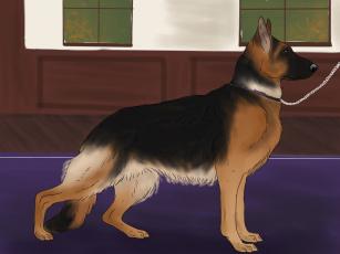 Картинка рисованное животные +собаки фон взгляд собака