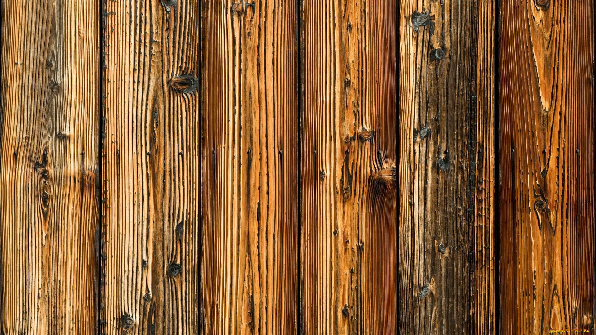 сердце древесина бревно в хорошем качестве