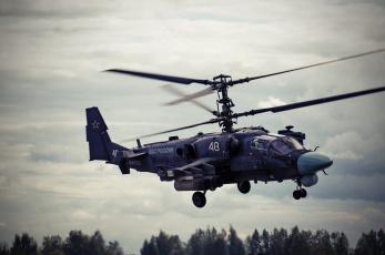 обоя kamov ka-52, авиация, вертолёты, вертушка