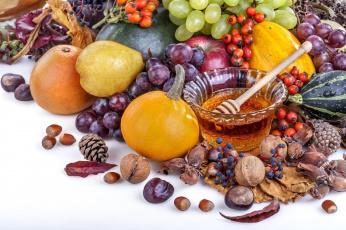 обоя еда, разное, мед, орехи, фрукты, ягоды, овощи