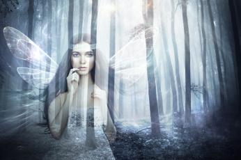 обоя фэнтези, фотоарт, крылья, взгляд, фон, девушка, лес