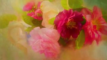 обоя разное, компьютерный дизайн, ярко, розовые, букет, яркие, живопись, алые, розы, лепестки, рисунок, шиповник, бутоны, зеленый, фон, арт, размыто, композиция, цветы, растворение