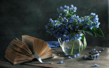 обоя разное, канцелярия,  книги, интерьер, предметы, цветы, вода, широкоформатные