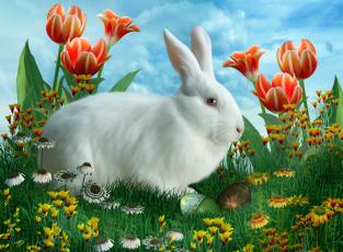 обоя праздничные, пасха, цветы, трава, яйцо, кролик, облака, тюльпаны