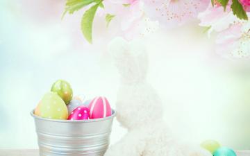 обоя праздничные, пасха, цветы, крашенки, ведро, игрушки, праздник, ветка
