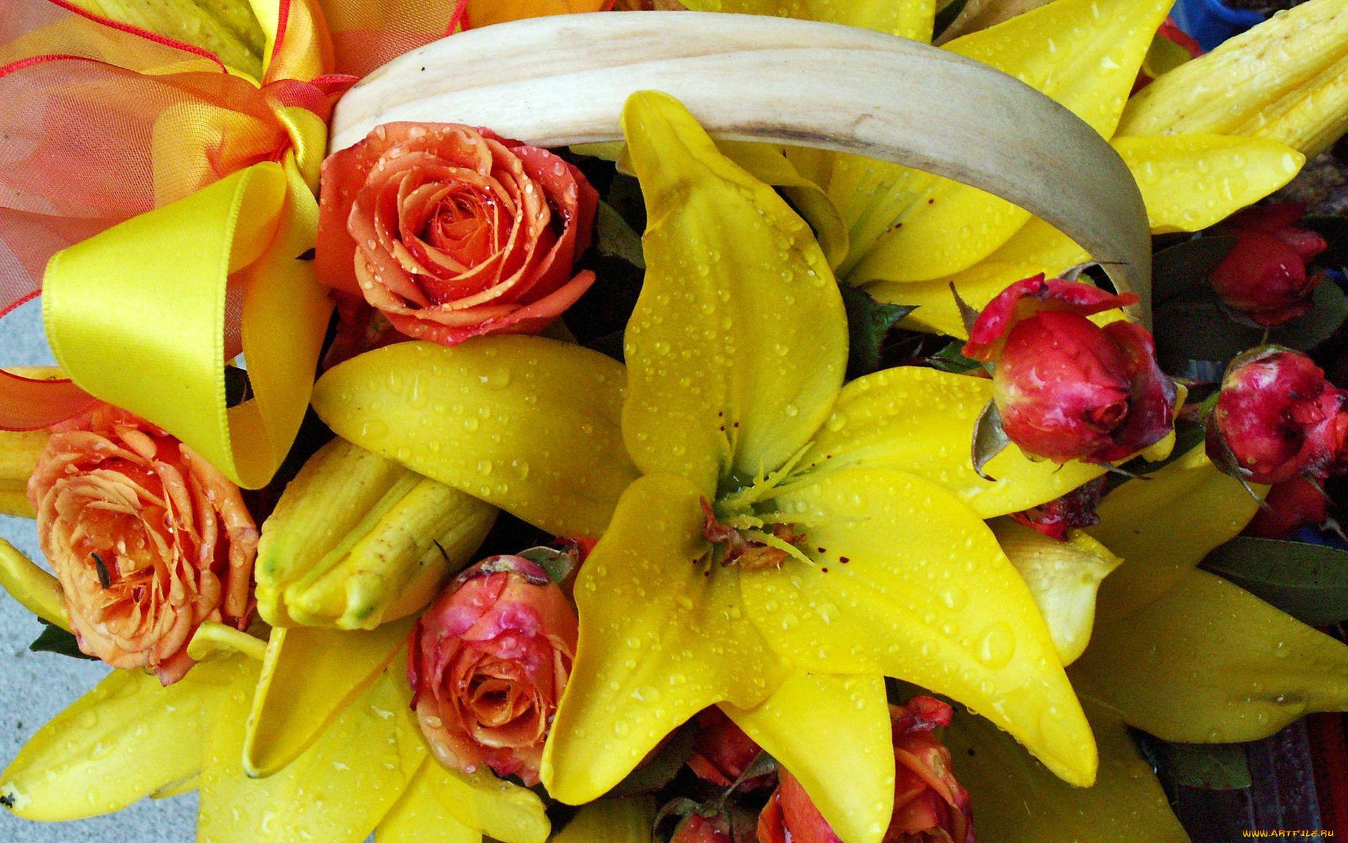 Красивые, лилии и розы картинки