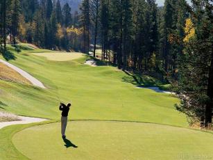Картинка спорт гольф