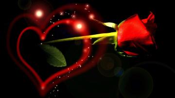 Картинка праздничные день св валентина сердечки любовь роза