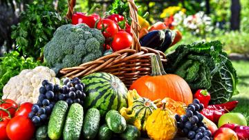 обоя еда, фрукты и овощи вместе, арбуз, виноград, помидоры, огурцы, капуста, брокколи