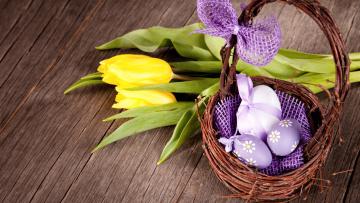 обоя праздничные, пасха, корзинка, писанки, бант, тюльпаны