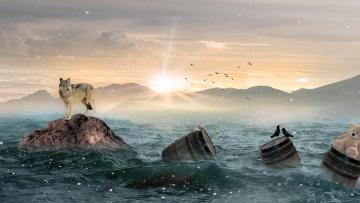 обоя разное, компьютерный дизайн, art, закат, море, волк, скалы