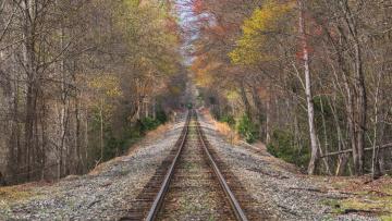 обоя разное, транспортные средства и магистрали, пейзаж, осень, железная, дорога, лес, деревья