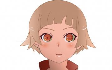 обоя аниме, bakemonogatari, девушка, фон, взгляд