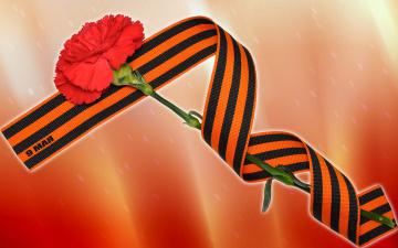 обоя праздничные, день победы, цветы, фон, лента
