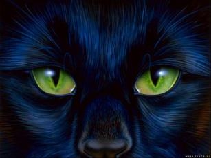 Картинка рисованные животные глаза