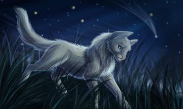 Картинка рисованное животные +коты кот взгляд фон трава ночь