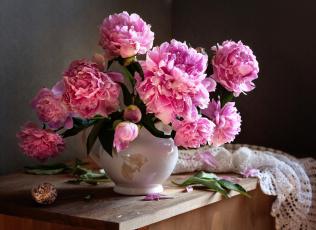 обоя цветы, пионы, натюрморт, букет, капли