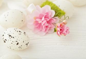 обоя праздничные, пасха, яйцо, цветок