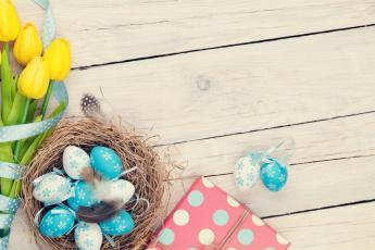 обоя праздничные, пасха, гнездо, яйцо, тюльпаны, перья