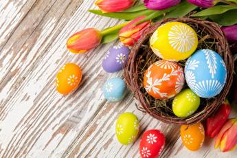 обоя праздничные, пасха, яйцо, тюльпаны, гнездо