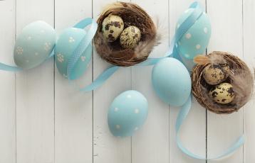 обоя праздничные, пасха, лента, гнездо, яйцо