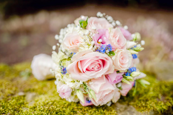 обоя цветы, букеты,  композиции, розы, букет, свадебный, незабудки