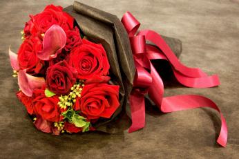 обоя цветы, букеты,  композиции, алый, бант, лента, каллы, розы