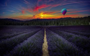 обоя цветы, лаванда, воздушный, шар, вечер, поле