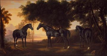 обоя рисованное, животные,  лошади, фон, лошадь