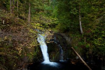 Картинка oregon usа природа водопады лес водопад осень