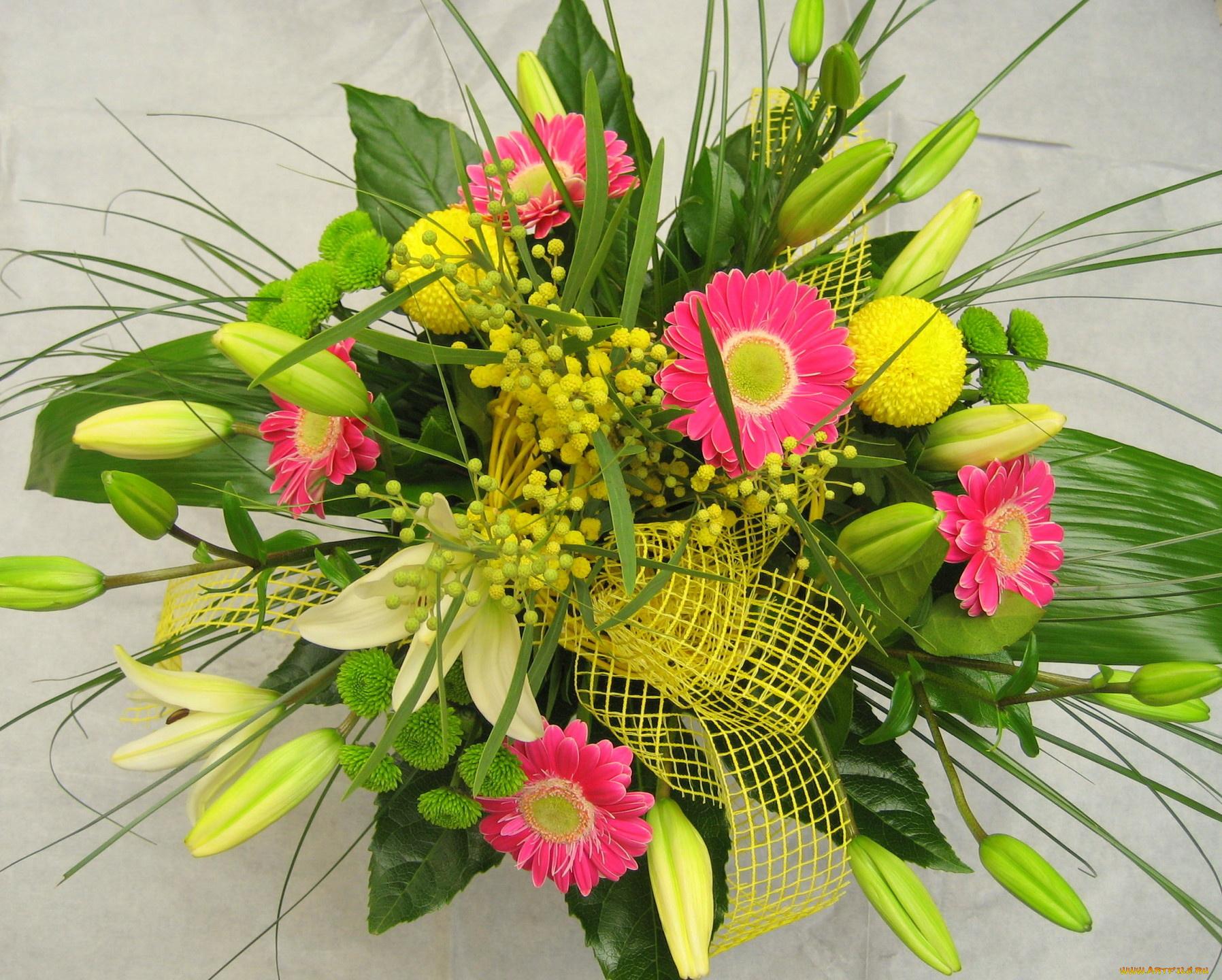 Цветы, мимоза букеты композиции