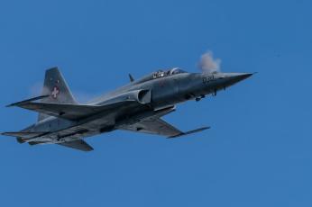 обоя f5 tiger, авиация, боевые самолёты, истреьитель