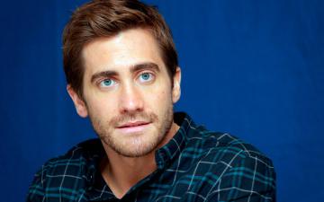 обоя мужчины, jake gyllenhaal, бородка