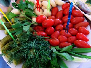 обоя еда, овощи, петрушка, укроп, огурцы, помидоры