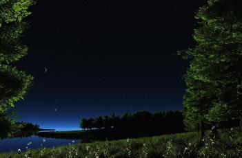 обоя 3д графика, природа , nature, трава, цветы, деревья, месяц, звёзды, небо, ночь