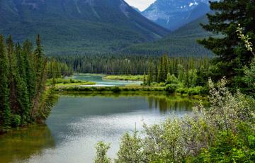 обоя природа, реки, озера, канада, живописный, национальный, парк, вуд-баффало