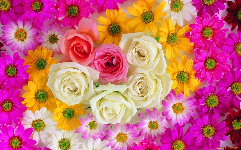 Красивый маникюр гель лаком фото с цветами
