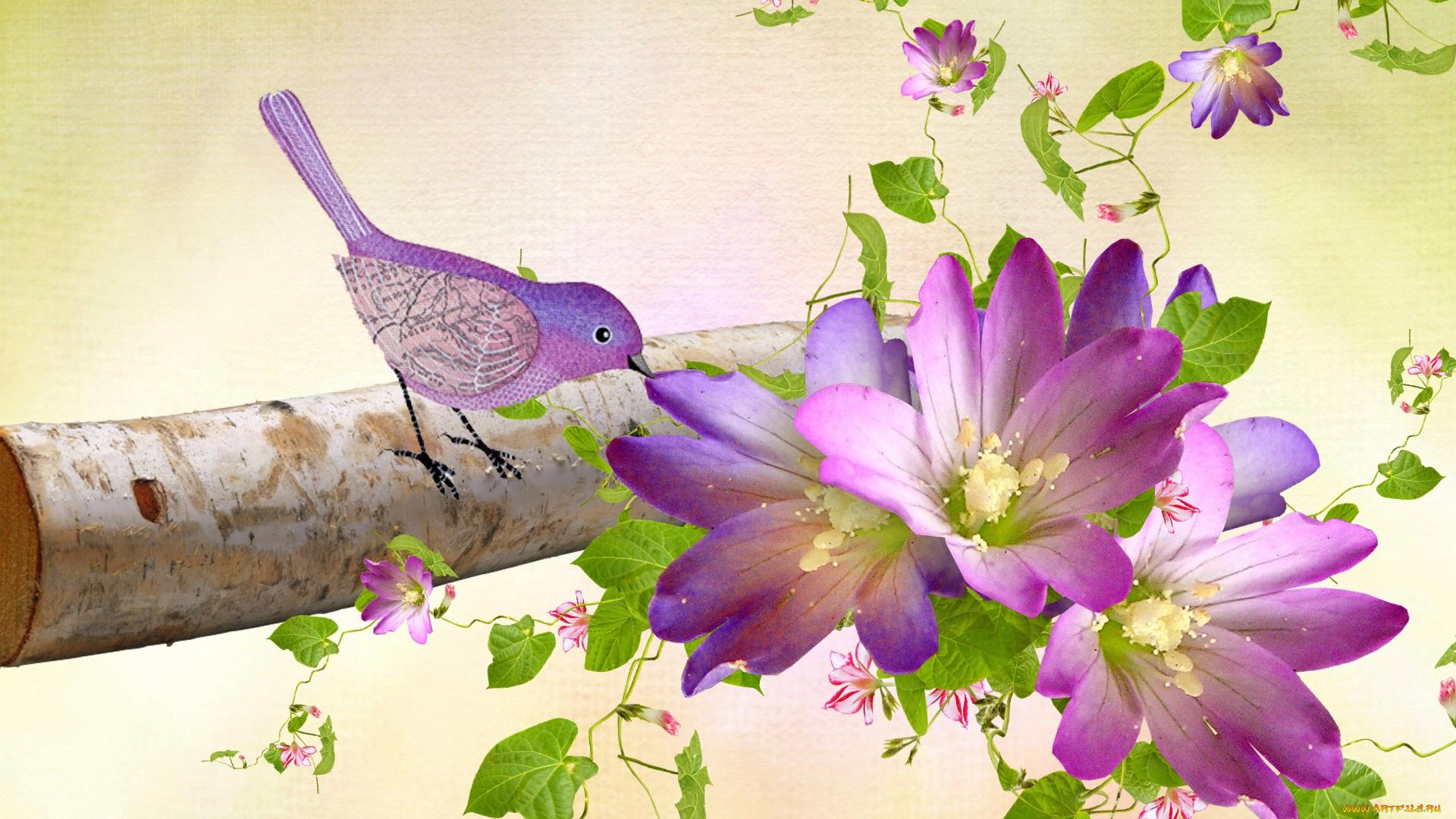 птица цветок  № 2034155 загрузить